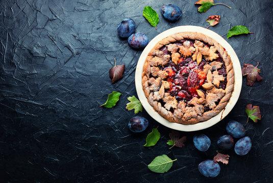 Appetizing plum cake,copy space