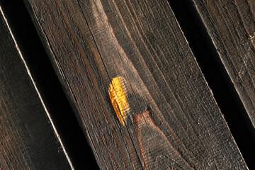 Fototapeta Brązowe drewniane deski elewacji budynku jako tekstura obraz