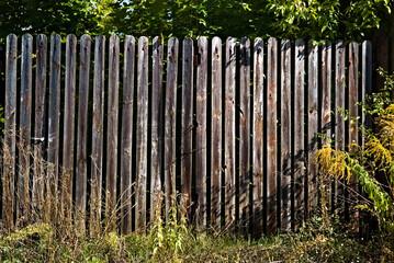 Fototapeta Drewniany płot z desek . obraz