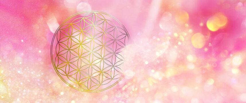 Blume des Lebens erleuchtet ein glitzerndes Feld magentafarbenen, goldenen Lichts und symbolisiert  Lebenskraft und Kreativität