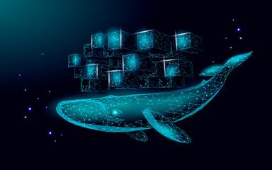 Fototapeta Whale and container computer docker developer app concept. Business digital open source program. Data coding steering 3D low polygonal vector line illustration obraz
