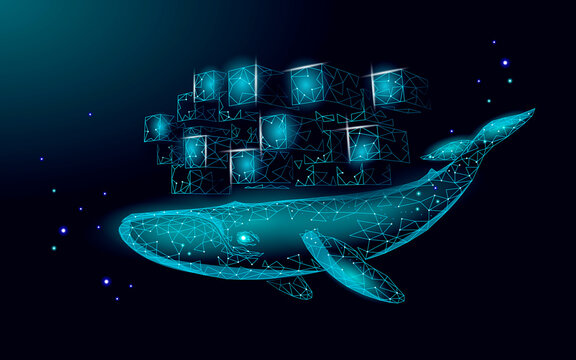 Whale and container computer docker developer app concept. Business digital open source program. Data coding steering 3D low polygonal vector line illustration