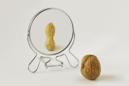 Walnut looking in the mirror and seeing itself as a peanut - Concept of dysmorphobia and distorted self-image
