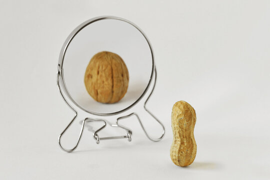 Peanut looking in the mirror and seeing itself as a walnut - Concept of dysmorphobia, anorexia, distorted self-image