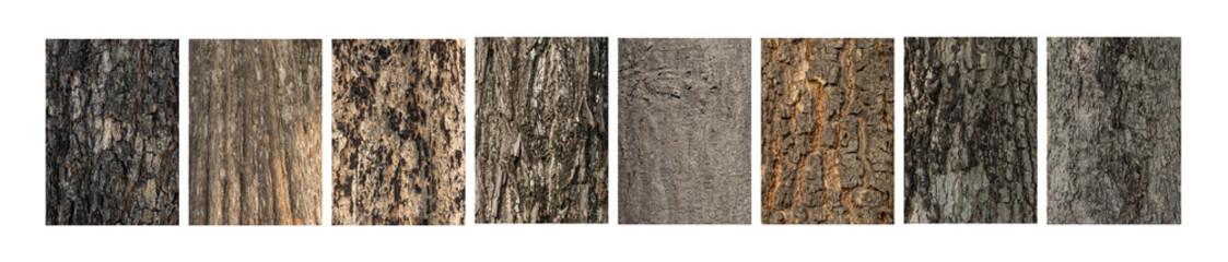 In reliëf gemaakte textuur van de schors van bomen op witte achtergrond instellen