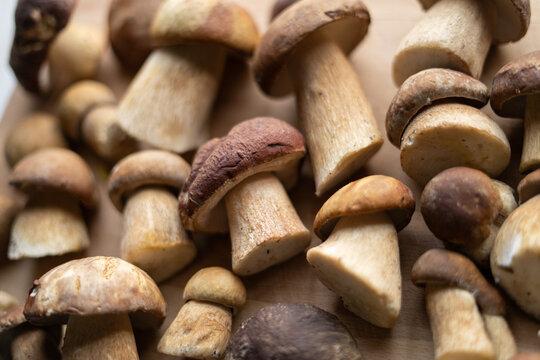 mushrooms on wooden table