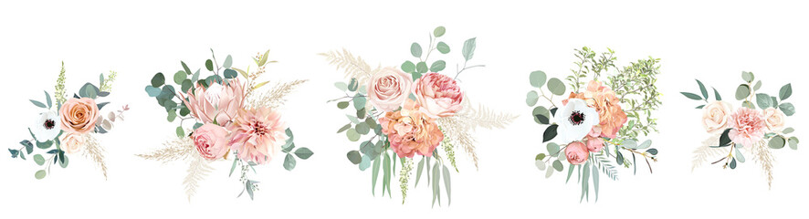 Fototapeta Peachy pink roses, ranunculus, white anemone, dried protea, dahlia vector design bouquets. obraz