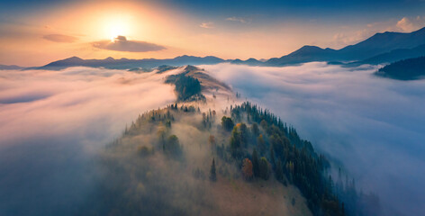 Fototapeta Breathtaking sunrise in Carpathian mountains. Astonishing morning view from fliying drone of the misty valley. Thick fog spreads over the mountain ranges. Beautiful autumn scenery.. obraz