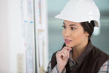 Fototapeta female architect studying plans obraz