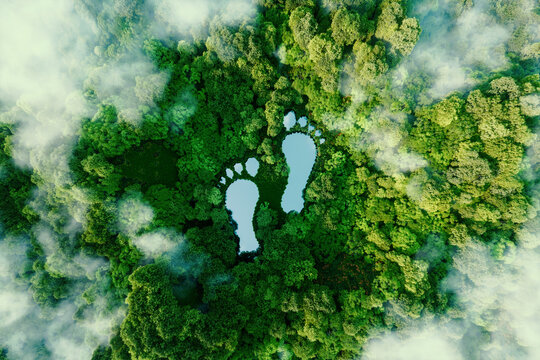 A lake in the shape of human footprints in the middle of a lush forest as a metaphor for the impact of human activity on the landscape and nature in general. 3d rendering.