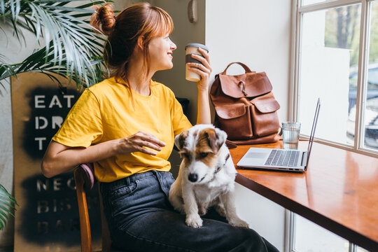 Young girl student sititng at table with computer and dog at work place. Pretty amazing female freelancer working at cafe with jack russell terrier.