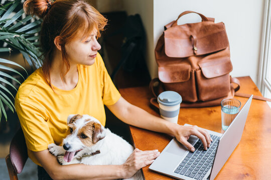 Cozy home, woman in yellow t-shirt watching movie, hugging cute dog. Relax, carefree, comfort lifestyle concept.