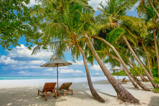 Beautiful beach. Chairs on the sandy beach near the sea. Summer holiday and vacation concept for tourism. Inspirational tropical landscape. Palm trees, blue sunny sky, idyllic relax nature, inspire
