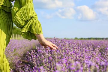 Fototapeta Beautiful young woman in lavender field obraz