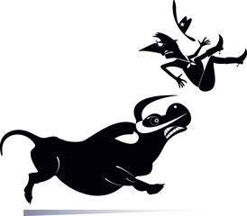 Obraz Cartoon rider falls from the bull illustration. Rodeo. Angry bull kicks a confused long mustache man or cowboy black on white   - fototapety do salonu