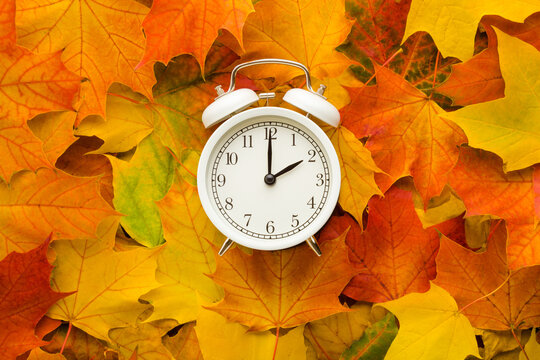 White alarm clock on colorful maple leaves background. Closeup. Time change concept. Top down view.