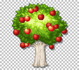 Apple tree on transparent background