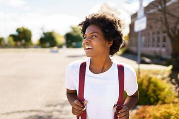 Fototapeta portrait of Beautiful African-American on the university playground obraz