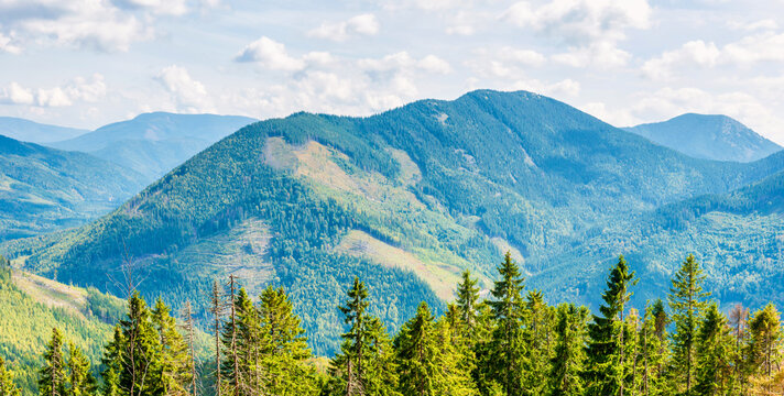 Blue mountains and green hills panorama, nature landscape