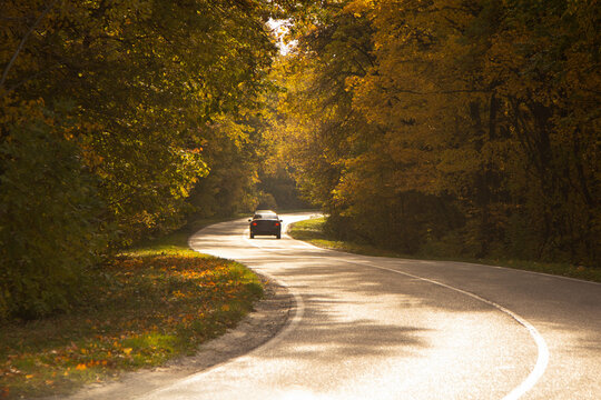 winding rual road inside colorful autumn forest with black car