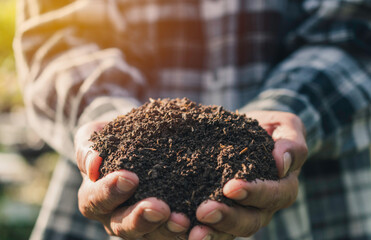 Obraz Man holding soil for planting in nature outdoor concept agriculture. - fototapety do salonu