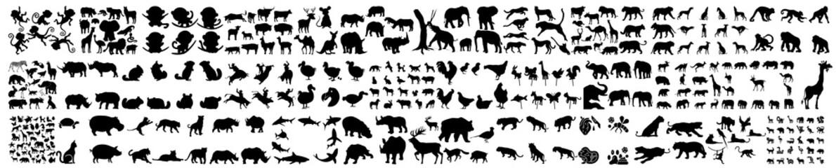 Fototapeta jungle animal silhouette,  Vector flat black set collection of african animals silhouette, Collection of different animals on a white background, An African safari animal silhouette landscape scene obraz