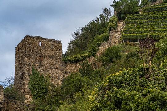 Castle ruins in Dürnstein-Oberloiben in the Wachau valley in Lower Austria, along the Danube river between Melk and Krems.