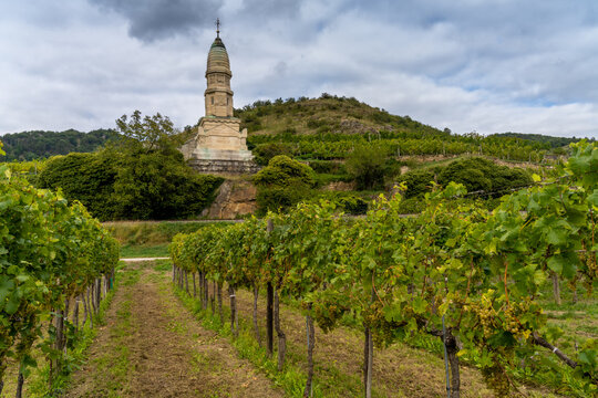 The famous vineyards of the  the Wachau valley in Lower Austria, along the Danube river between Melk and Krems. Known for its charming villages, stunning monasteries, castles, vineyards and cuisine