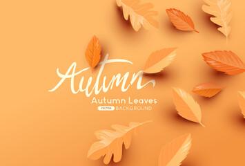 Fototapeta Falling autumn leaves background with copy space. Autumn fall vector illustration obraz