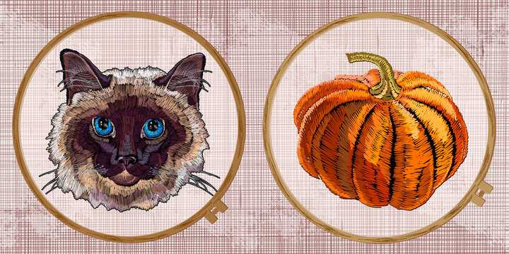 Orange pumpkin and cat head. Embroidery collection. Template tambour frame with a canvas, elements from stitches. Art for clothes