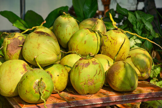 Fresh coconut for sale on street