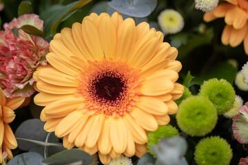 Obraz Urodzinowe kwiaty - fototapety do salonu