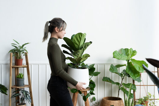 Happy woman carrying a houseplant