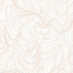 Fototapeta Topographic map pattern, topography line map. Vector stock illustration obraz