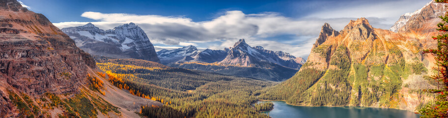 Panoramic View of Glacier Lake with Canadian Rocky Mountains in Background. Sunny Fall Day. Located in Lake O'Hara, Yoho National Park, British Columbia, Canada. Nature Panorama