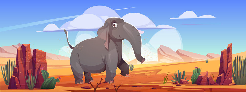 Funny elephant walk at desert landscape, cartoon wild animal character at deserted nature background with sand, rocks and cacti. Wildlife, safari park or outdoor zoo environment, Vector illustration