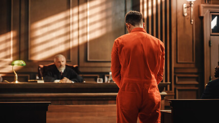 Obraz Court of Law and Justice Trial Proceedings: Law Offender in Orange Jumpsuit is Questioned and Giving Testimony to Judge, Jury. Criminal Denying Charges, Pleading, Inmate Denied Parole. - fototapety do salonu