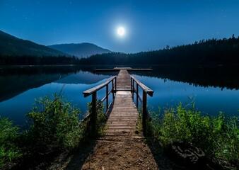 wooden bridge in the lake