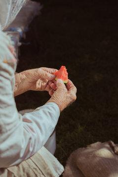 Old woman eats juicy red watermelon in sunlight, copy space