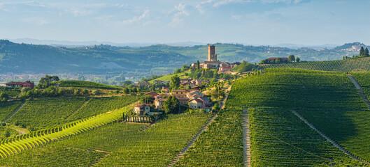 Fototapeta Beautiful hills and vineyards surrounding Barbaresco village in the Langhe region. Cuneo, Piedmont, Italy. obraz