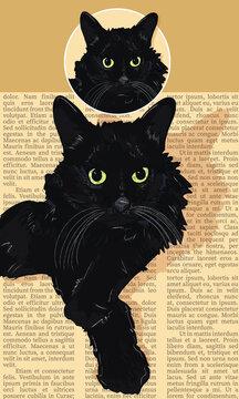 Black Medium Hair Cat