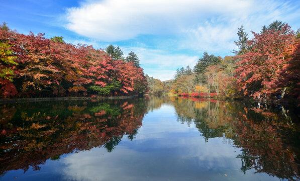 Beautiful lake view in autumn