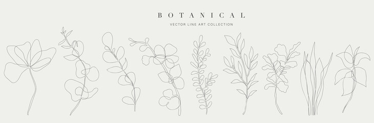 Obraz Botanical arts. Hand drawn continuous line drawing of abstract flower, floral, ginkgo, tropical leaves, spring and autumn leaf, bouquet of olives. Vector illustration. - fototapety do salonu