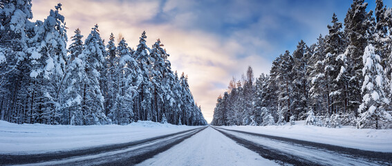 Obraz Panoramic view of the beautiful country road in winter - fototapety do salonu