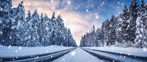 Obraz Panoramic view of the beautiful country road in winter in snowfall. - fototapety do salonu