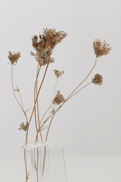 Vase with dry flowers on white table. Minimalist style home interior decoration .Simplicity and Elegance concept.