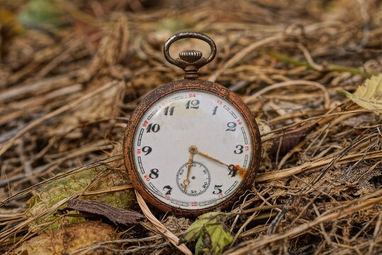 one old pocket watch lies in dry brown grass in nature