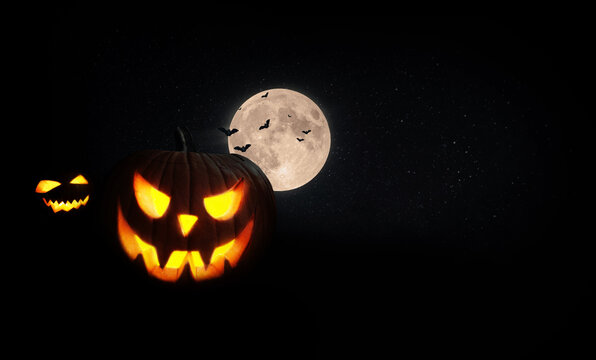 Halloween scary pumpkins with the moon and bats in the field at night. Black happy halloween for design