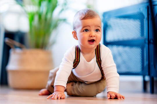 Cute baby boy playing while sitting on floor at home