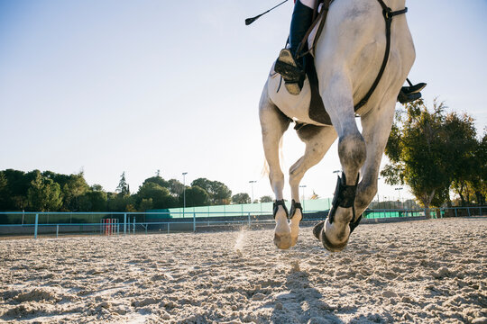 Low section of girl riding white horse during training at ranch on sunny day
